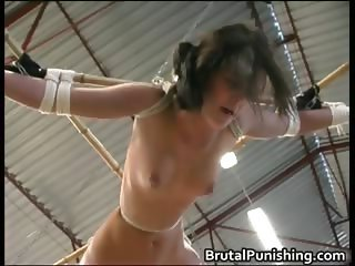 Bound small and Tormented part2